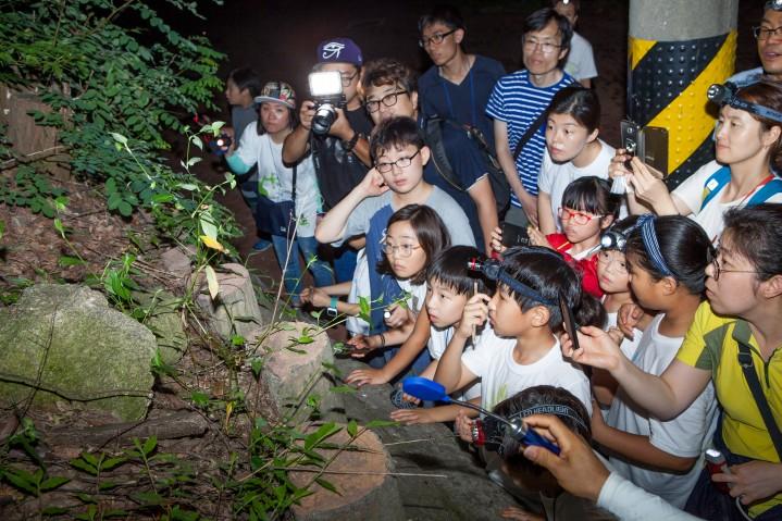 지구사랑탐사대 4기 가족 캠프에 참여한 탐사대원들이 매미의 우화 과정을 관찰하고 있다. - 어린이과학동아 제공